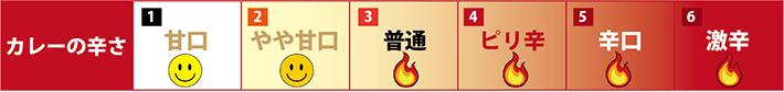 カレーの辛さ6段階